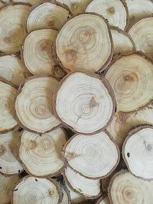 Dekorácie - Drevené plátky z tuje - priemer 5,5 - 7 cm - 13235432_
