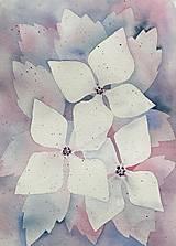 Obrazy - Originál akvarel Nežná jar - 13240535_