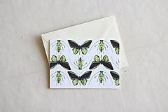 Papiernictvo - Akvarelová pohľadnica | ilustrácia Motýle a chrobáčiky - 13238721_