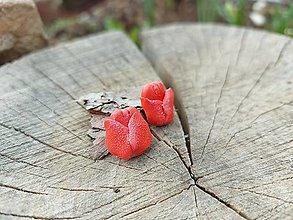 Náušnice - Tulipány - 13254693_
