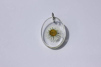 Náhrdelníky - Sedmokráska živicový prívesok - 13278460_