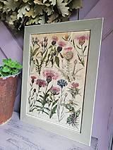 """Obrázky - Vintage botanický obrázok """"Nevädza"""" na starom papieri - 13279892_"""