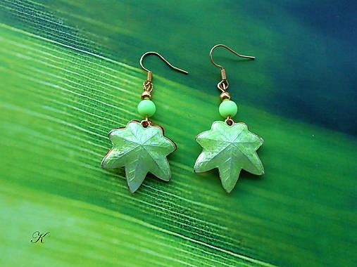 Náušnice cloisonné listy javorové barvy zelenkavé