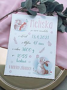 Detské doplnky - Tabuľka pre bábätko s údajmi o narodení zajko - 13292693_