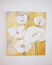 Obrazy - BIELE maky, 50 x 55 cm, akryl - 13294925_