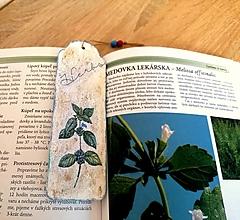 Papiernictvo - drevená záložka do knihy Herbs - 13306731_