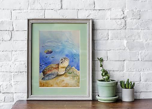 Akvarelová maľba-korytnačka