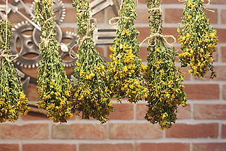 Potraviny - Sušená dekoračná kytička Ľubovník bodkovaný bio - 13337126_
