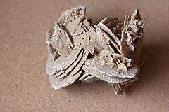 Minerály - Púštna ruža Sahara / Maroko / veľký minerál - 13350914_
