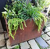 Nádoby - Kovový kvetináč na trvalky, dreviny ... - 13349480_