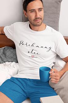 Oblečenie - Pánske tričko- Požehnaný otec - 13356331_