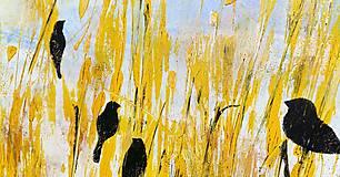 Obrazy - Pred letom, 100x60, abstraktný obraz - 13354075_