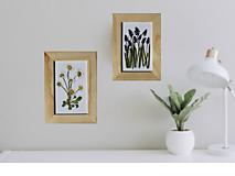 Detské doplnky - SEDMOKRÁSKY obrázok z lisovaných rastlín 3D Herbár Botanika - 13364761_