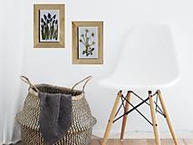 Obrazy - Modrica Muscari Prírodný obrázok z lisovaných kvetov Herbárium - 13364812_