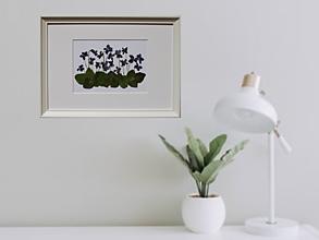 Obrazy - Obrázok Botanika Fialky Sušené lisované kvety 3D - 13364846_
