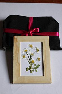 Hračky - Montessori hračky Vyrob si vlastný botanický obrázok Sedmokrásky - 13366630_
