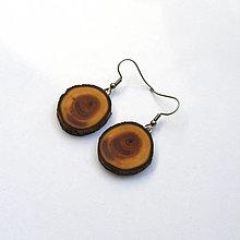 Náušnice - Drevené náušnice visiace - z tisovej halúzky - 13375356_
