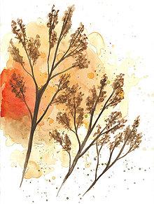 Obrazy - Jesenné farby - 13378979_