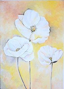 Obrazy - BIELE MAKY 3, akryl, 50 x 70 cm - 13383250_