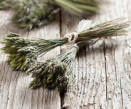 Dekorácie - Kytičky lúčnych tráv - dĺžka do 25 cm (cca 45 stebiel) - 13383018_