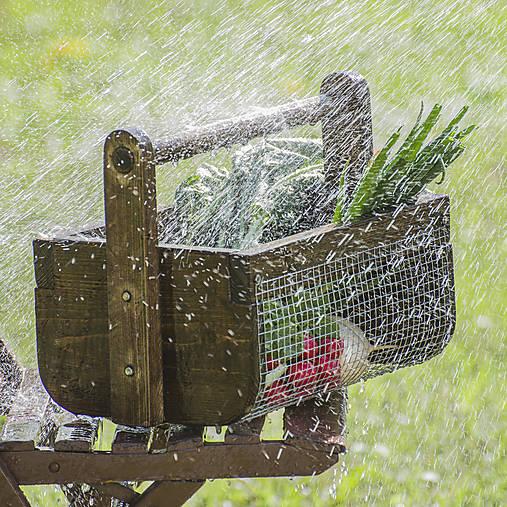 Košík na zeleninu