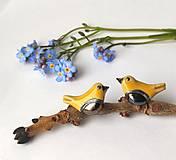 Náušnice - vtáčiky - keramické náušnice - 13390287_
