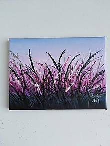 Obrazy - Trávy... olejomaľba na plátne - 13408466_