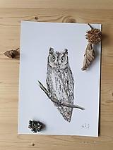 Kresby - Kresba:sova Výrik obyčajný - 13414483_