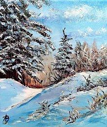 Obrazy - Pod snehom - 13425368_