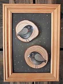 Obrázky - Vtáčky.. - 13437420_
