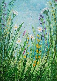 Obrazy - Lúčne kvety - 13439807_