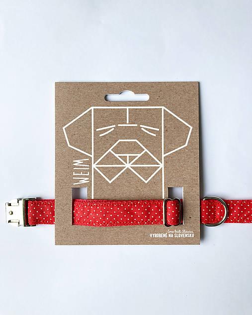 Obojok Pipi - červený s mini bodkami