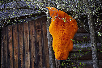 Nábytok - Ovčia kozušina oranžová - 13460930_