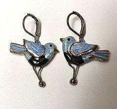 Náušnice - Keramické náušnice vtáčiky modré - 13472072_