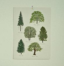 Grafika - Print A3 - Stro:my - 13478268_