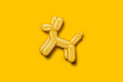 Pes brošňa (Žltá)