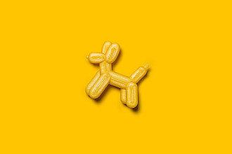 Brošne - Pes brošňa (Žltá) - 13477052_