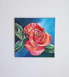 Obrazy - RUŽA, 40 x 40 cm, akryl - 13497969_