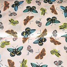 Textil - motýle, 100 % bavlna Holandsko, šírka 160 cm - 13501604_