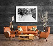 """Fotografie - Fine Art Print """"Po snežení""""/""""After snowfall"""" - 13516139_"""