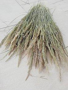 Suroviny - Sušená tráva pre ďalšie tvorenie - 13524645_