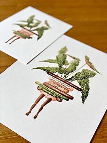 Grafika - Klub čitateľov - Print | Botanická ilustrácia - 13529902_