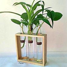 Nádoby - Drevený stojan so skúmavkami - Herb - 13538479_