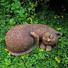 Dekorácie - Micka spící - 13538116_