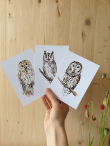 Papiernictvo - Pohľadnice -sovy výber - 13550007_