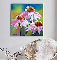 Obrazy - Echinacea 50x50 - 13559152_