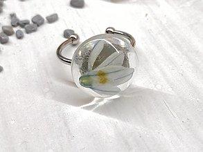 Prstene - Prsteň kvetoláska puškínia - 13560681_