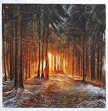 Obrazy - Prvý sneh - 13566276_