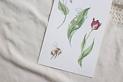 Kresby - Akvarelový art print   Jarné kvietky - 13571804_