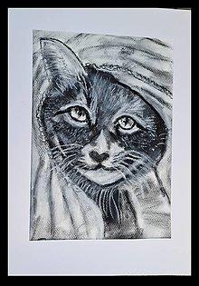 Kresby - Mačka v šatke - 13576374_